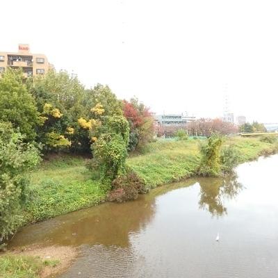 駅までの道のりに植田川