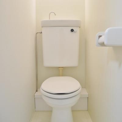 お風呂みたいな素材のトイレ。 !※写真は別部屋