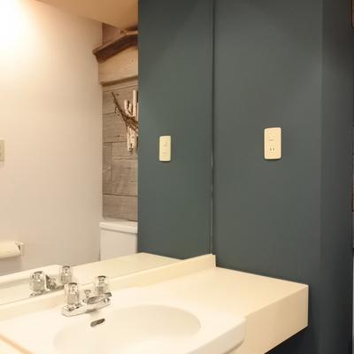 鏡が大きいのがありがたい♪