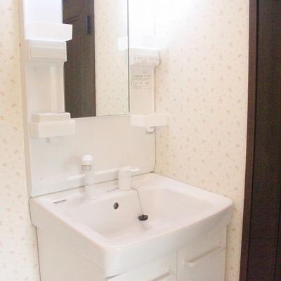 シャワー付の水栓は何かと便利ですね