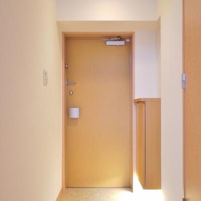 ゆったりとした玄関。シューズBOXも付いてます。