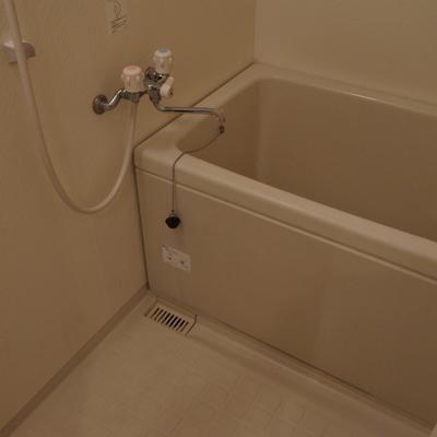 お風呂は普通ですね