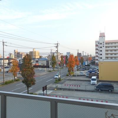 中川区の穏やかな風景