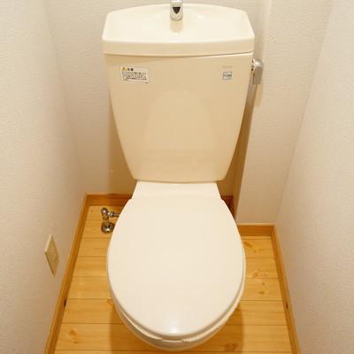 トイレは個室なのが◎
