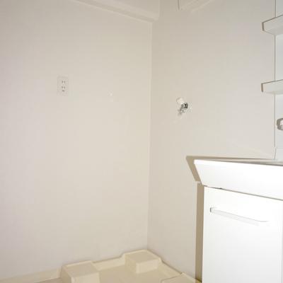 洗濯機も室内ですよ※照明が点かず暗くてすみません