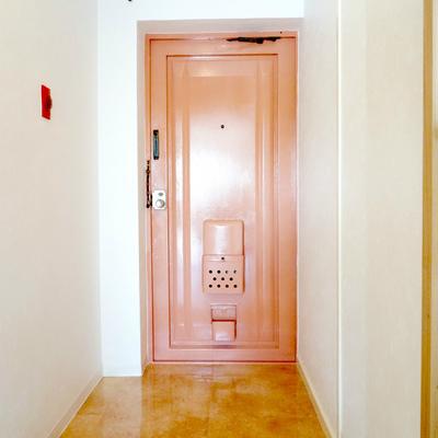 どこでも行けそうな玄関ドア。