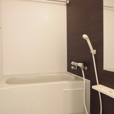 落ち着いた雰囲気の浴室。