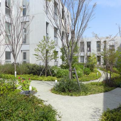 敷地内にある中庭。住みたい!