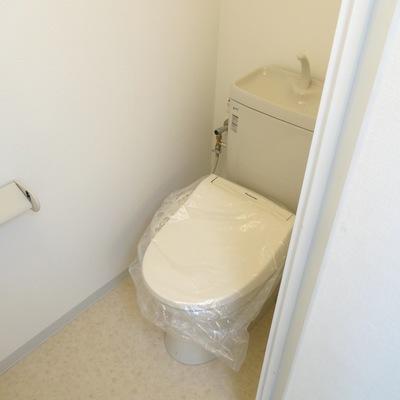 トイレも充分綺麗!