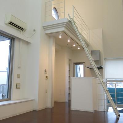 このハシゴ階段を登るのです