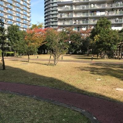 入口出ればのどかな公園