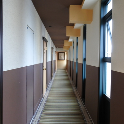共用廊下も、カーペット敷