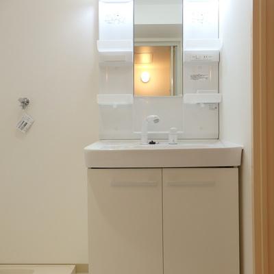 独立洗面台の横に洗濯機。