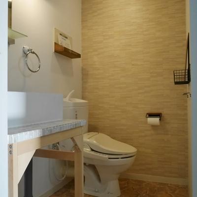 脱衣所兼トイレ+洗面台