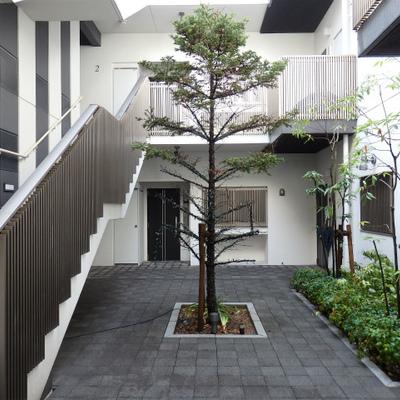 建物全体の雰囲気が素敵なマンション