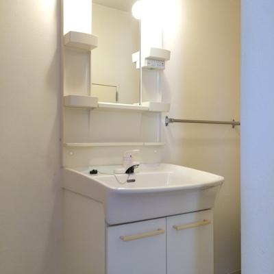 洗面台の奥にトイレが有ります