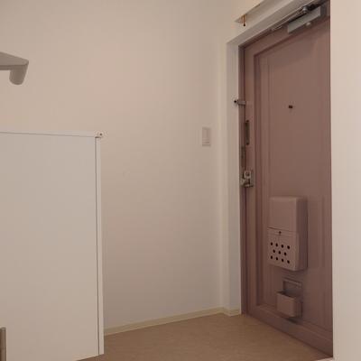 スモーキーカラーの玄関扉。