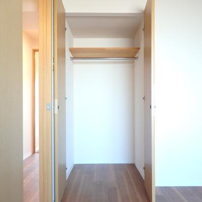 洋室の収納です。※別部屋の写真です