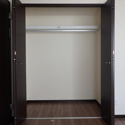 洋室の収納も大きめ。