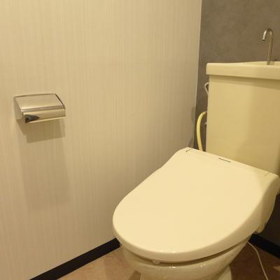 トイレの壁はさりげなくグレー