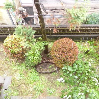 下には小さなお庭が見えます。