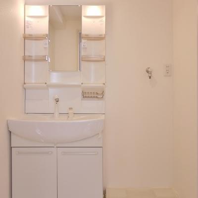 広めの洗面所スペース。