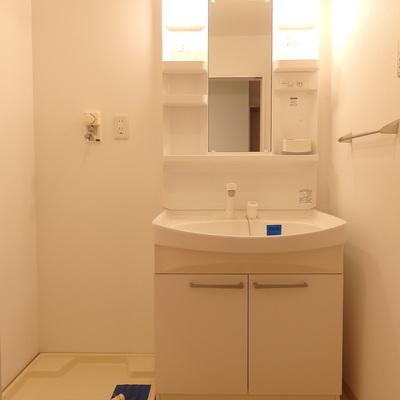 独立洗面台のすぐ横に洗濯機置場。