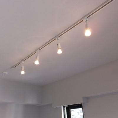 照明はライティングレールです