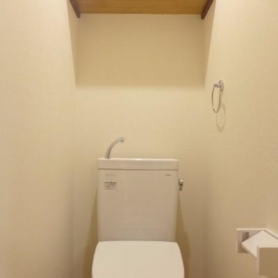 トイレには木の棚があっていいですね!