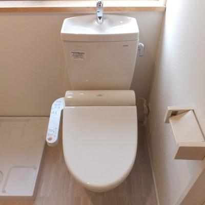 トイレ付近に収納はないので、洗濯機上のスペースを有効活用したいですね!