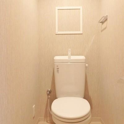 トイレはウォシュレットではありません…。