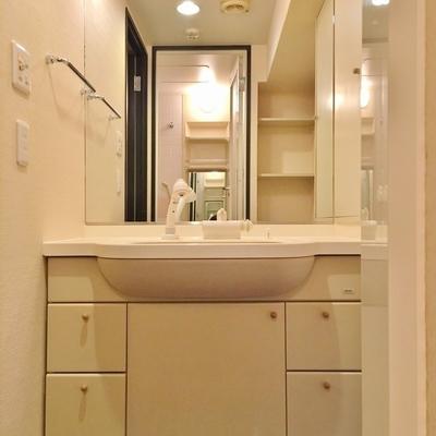 洗面台、大きい!シャンプードレッサーです!