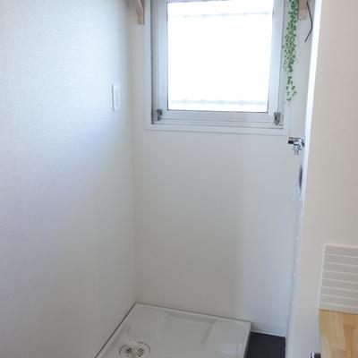 洗濯パンも新設。棚があるのも嬉しいポイント。
