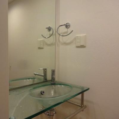洗面台回りの収納は自分でご用意を※別部屋の写真です