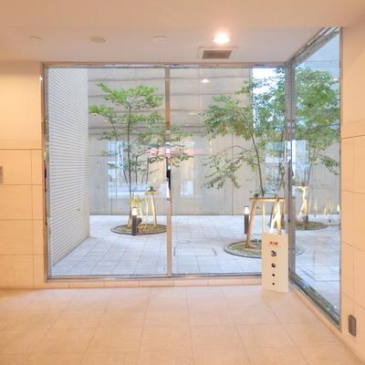 1階にある、中庭のような空間!