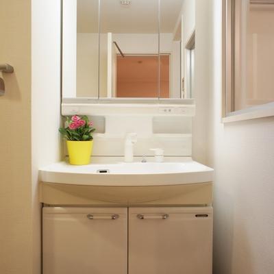 地下1階水回り。洗面台。※写真は前回募集時のものです