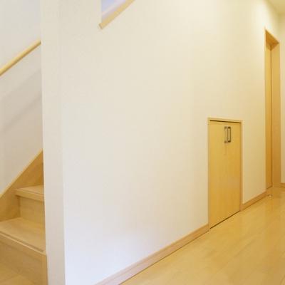 1階の階段下にも収納スペース見っけ!