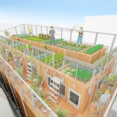 屋上で何を育てよう(画像はイメージです)
