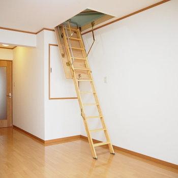 洋室①】蓋を開けるとはしごが出てきた!