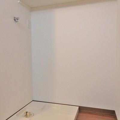 洗濯機置き場の上にも棚あります!