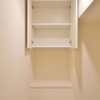 上部には収納。助かる~。