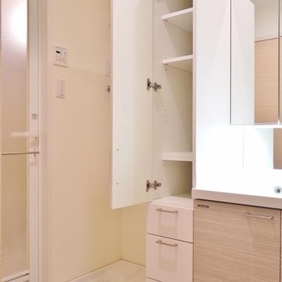 隣には洗濯置場と収納スペース。