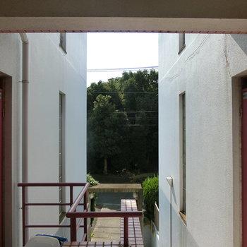共用部の雰囲気。ピンク色の玄関扉。