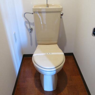 トイレは普通(写真は601号室)