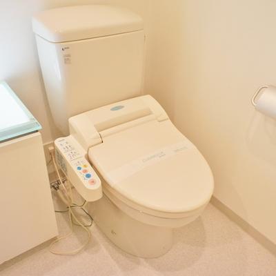 トイレ、個室じゃないけど設備は十分