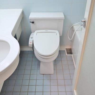 ウォシュレット付きトイレ。※写真は前回撮影時のもの