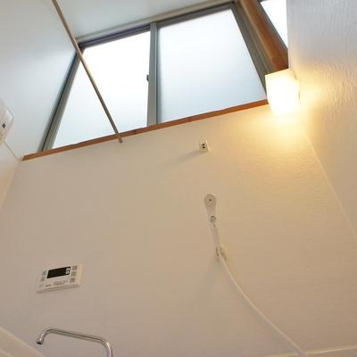 この天井ですよ。優雅すぎ!