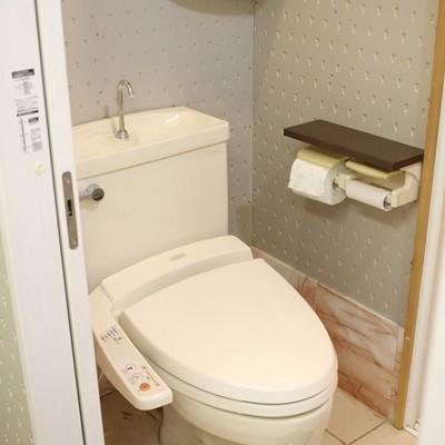 洗面台の前にトイレ