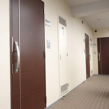 共用スペース。玄関はダブルロックで安心です。