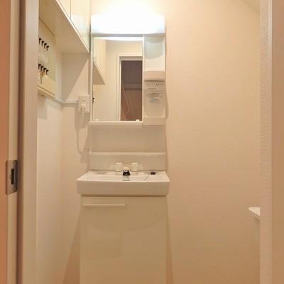 洗面台はトイレと同じ空間に。